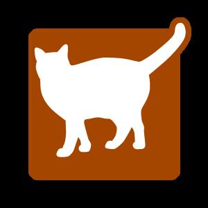 Picto chat accessoires