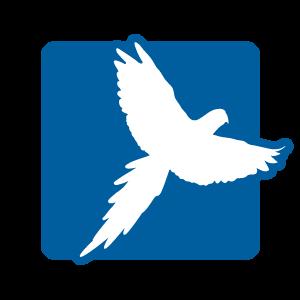Picto oiseau accessoires