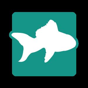 Picto poisson accessoires