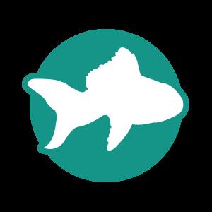 picto poisson