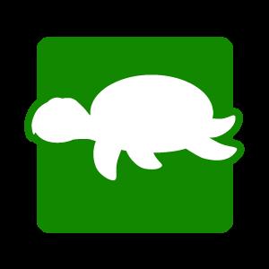 Picto tortue accessoire